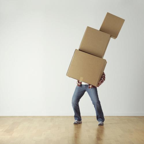 The box model explained